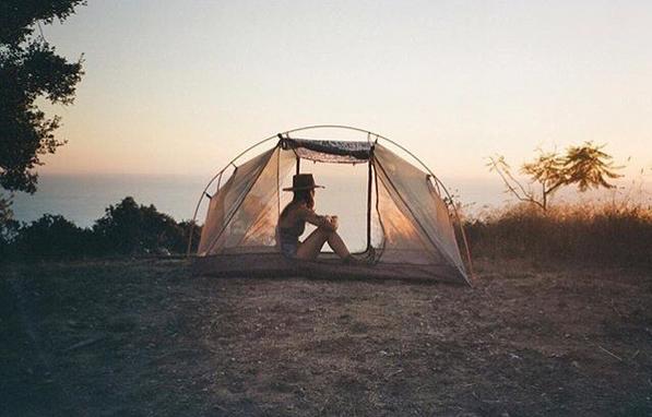wild campen